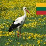 Corona in Litauen