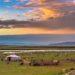 Mongolei - Welche Impfungen braucht man?